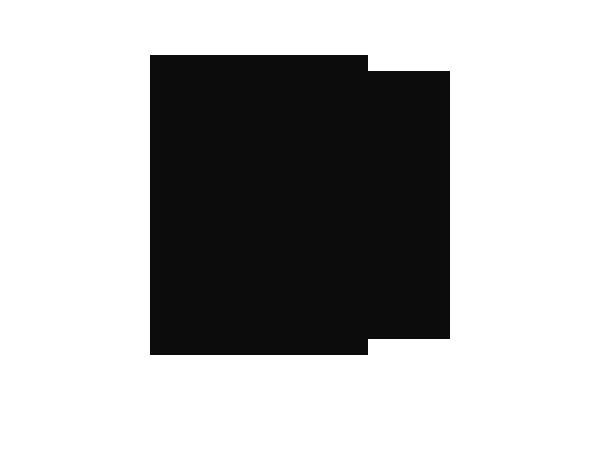 logo partenaire officiel